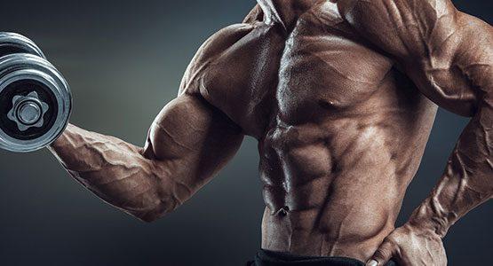 ۴ راه برای شکستن توقف رشد عضلانی