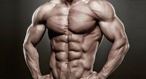 4-tip-for-gain-muscle