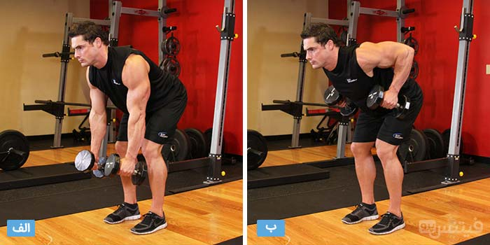 bent-over-dumbbell-rows
