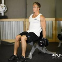 seated-dumbbell-curl