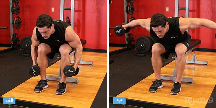 seated-bent-over-rear-delt-raise