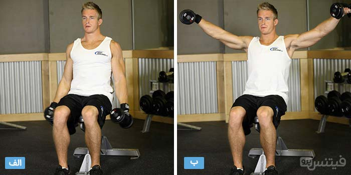 seated-side-lateral-raise