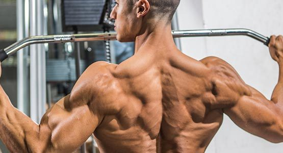traps-best-trained-with-back-or-shoulders